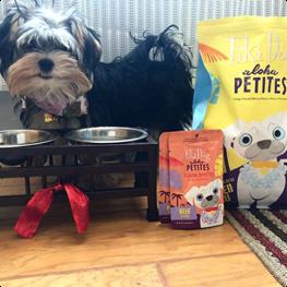 Tiki Pets Instagram